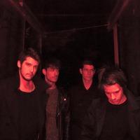 Megjelent a Ripple Soul, a Middlemist Red új albuma
