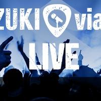 Jól szponzorált szórakozás: Suzuki viaDAL Live @ Akvárium Klub 2015.01.17.
