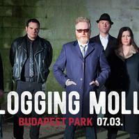 A Budapest Parkba jön a Flogging Molly