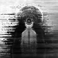 Shadow Domain - Így hangzik az ex-Darkest Hour, ex-Sybreed és ex-Static-X tagokat felvonultató csapat zenéje