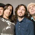 Lenyomta az első Frusciantes buliját a Red Hot Chili Peppers