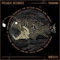 Hallgasd meg a Pelagic Records és a Visions Magazine közös válogatását!