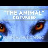 Klipözön: Disturbed, Ill Nino, Halford és My Chemical Romance videók [VIDEJÓ EXTRA]