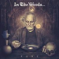 In The Woods ... - Pure (Debemur Morti, 2016)