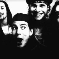 Új Pearl Jam dal. Olé!