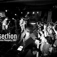 Metrosection: új dalok