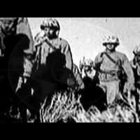 Napi brutál – Napalm Death: On The Brink Of Extinction  [VIDEJÓ  EXTRA]
