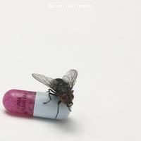 Red Hot Chili Peppers - Dalok és az új album borítója