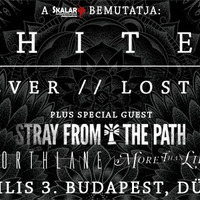 More Than Life, Northlane, Stray From The Path, Architects @Dürer Kert, 2014. 04. 03.