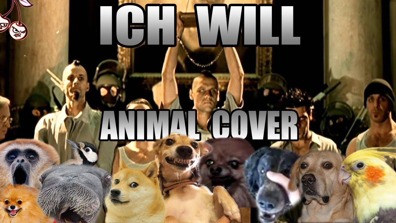 animalichwill.jpg