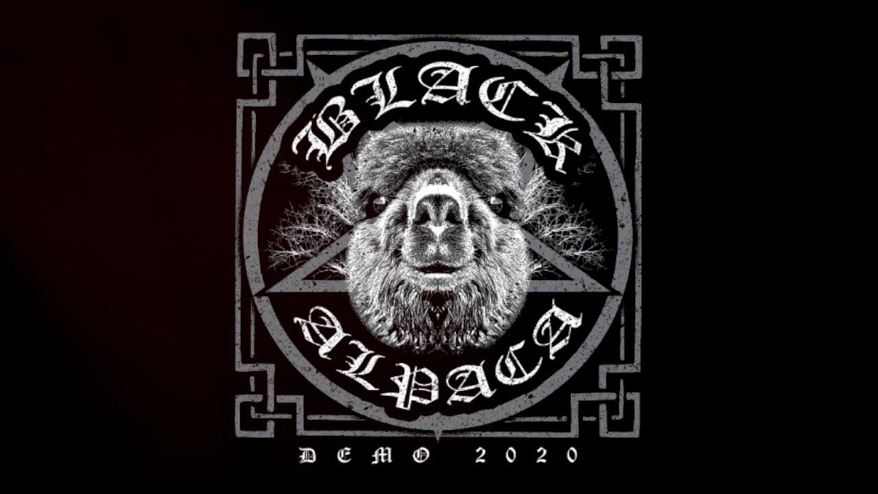 blackalpaca.jpg