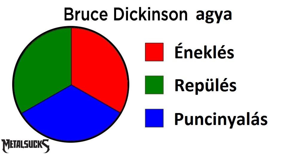 dickinson-brain-pie-chart.jpg