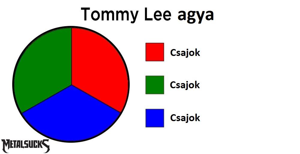 tommy-lee-brain-pie-chart.jpg