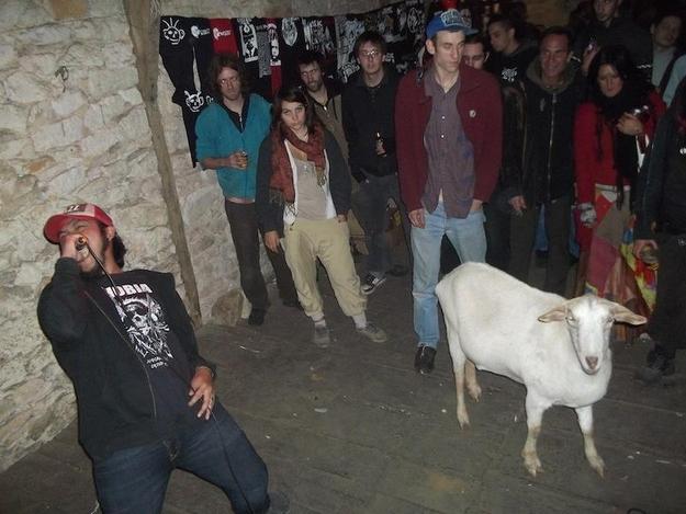 Grind-Goat-1.jpg