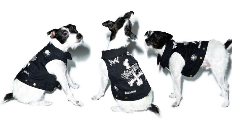 party-animalz-patchez-dog-vest.jpg