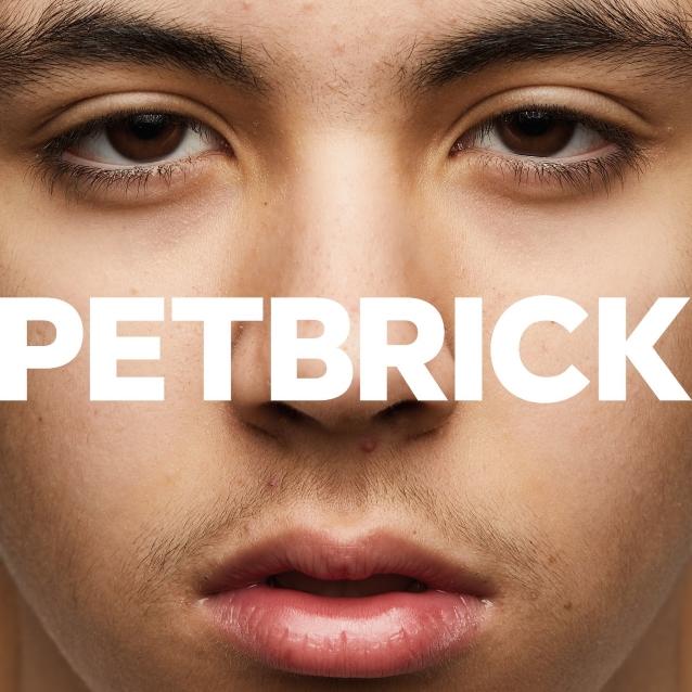 petbrickcdcover.jpg