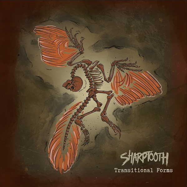 sharptooth_transitionalforms_cover.jpg