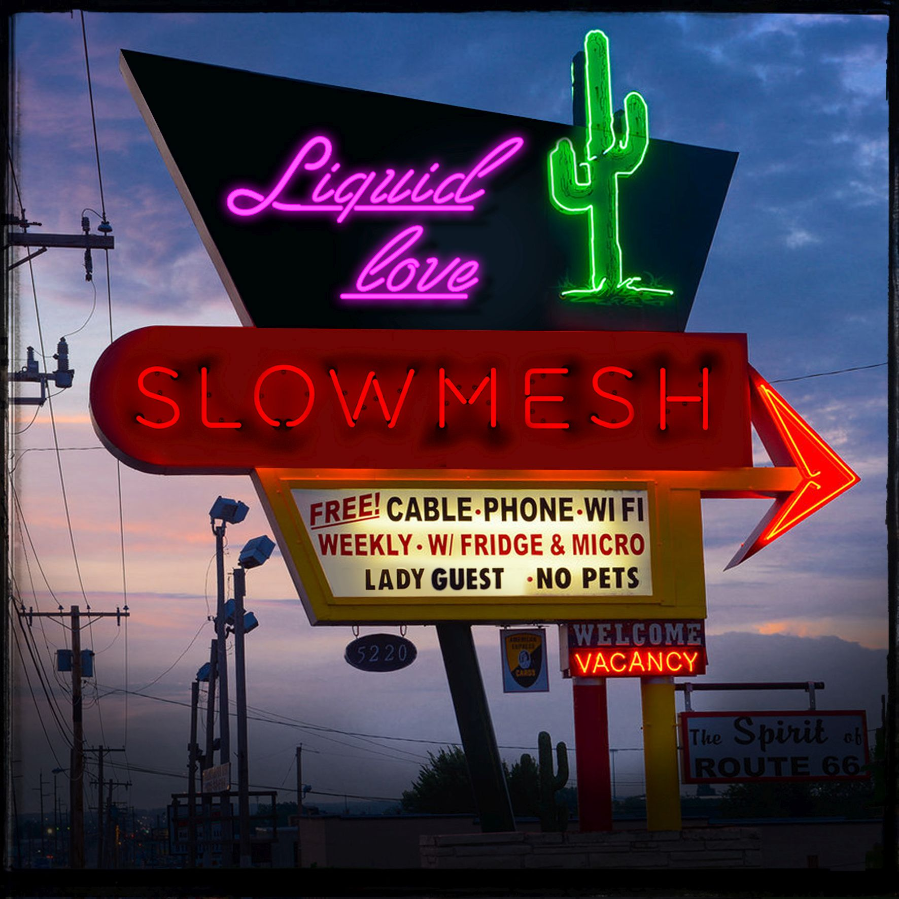 slowmesh_epcover_new_pink.jpg