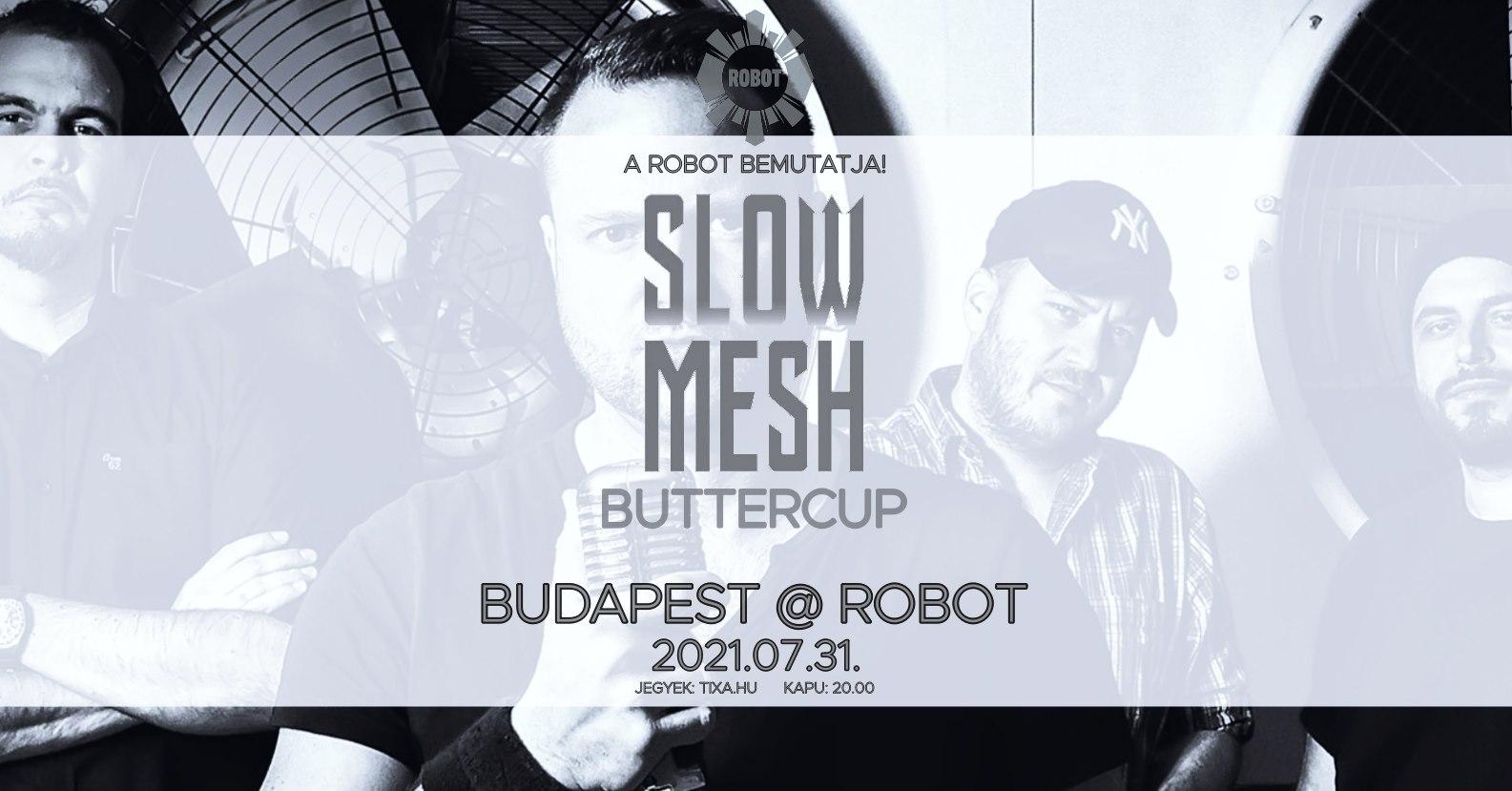 slowmeshrobot.jpg