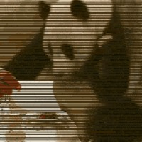 A Panda poén picit másképp