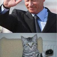 Putyin majdnem mindenkivel haverkodik
