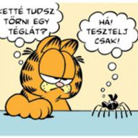 Képregény - Garfield