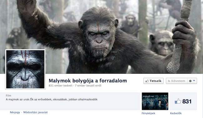 malymok_1404133184.jpg_650x378