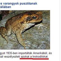Breki, meg azok a krokodilok