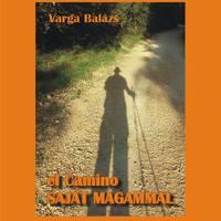 Előszó Varga Balázs EL CAMINO SAJÁT MAGAMMAL című könyvéhez  //  Foreword to Balázs Varga's book entitled EL CAMINO WITH MYSELF