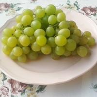 Mihez kezdjünk a szőlővel? Íme, az 5+1 legizgalmasabb recept