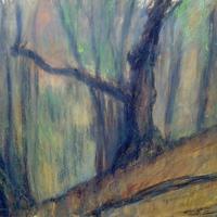 Kőszegi erdőben (2.)
