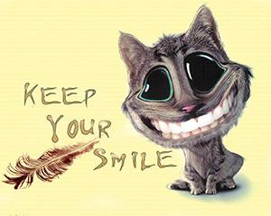 cat_keep_your_smileg_1392886163.jpg_300x240