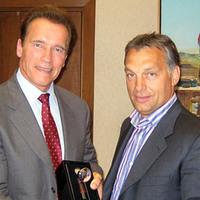Whatever (not) happened to Arnie and Viktor