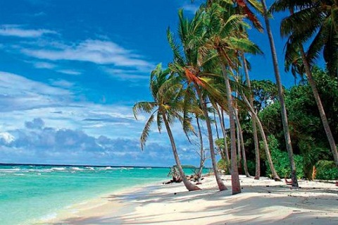 I'm going to Barbados (click here)