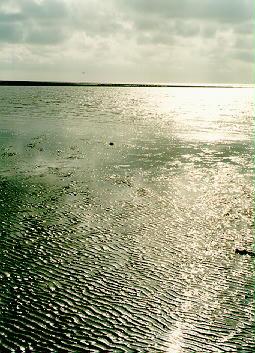 Apály az Északi-tengernél, 1994