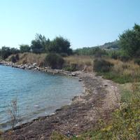 Sár József: Rovargyűjtés Horvátországban