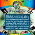 Egzotikus Rovar-Csodák
