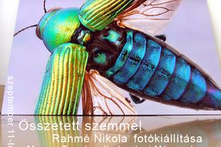 Összetett szemmel - Rahmé Nikola fotókiállítása a Magyar Természettudományi Múzeumban.