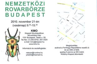 Nemzetközi Rovarbörze Budapesten 2010 november 21-én vasárnap