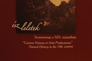ÉSZ-LELETEK - Természetrajz a XIX. században, bővített kedvcsináló