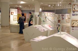 Magyar Természettudományi Múzeum: Hatlábúak birodalma rovarkiállítás 12. kép