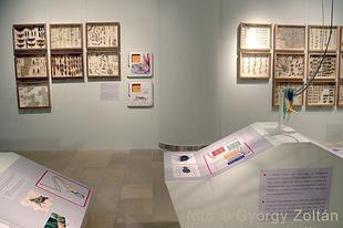 Magyar Természettudományi Múzeum: Hatlábúak birodalma rovarkiállítás 10. kép