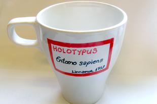 """Holotípus bögre """"Entomo sapiens"""" felirattal, akár Karácsonyra"""