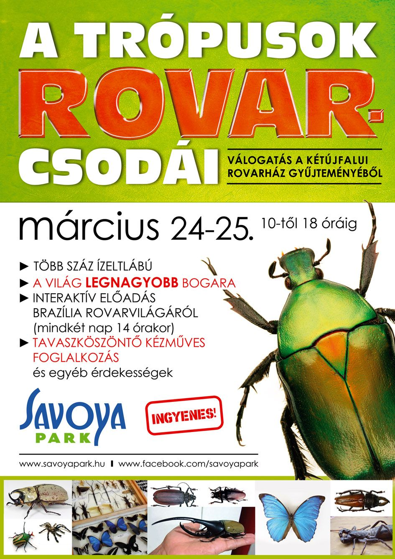 Rovar_kiallitas_A1_1-1.jpg