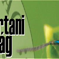 Válogatás a Rovarász Híradóban korábban megjelent írásokból. Sípos Bánk Botond: Adatok Magyarország hártyásszárnyú-faunájához (Hymenoptera)