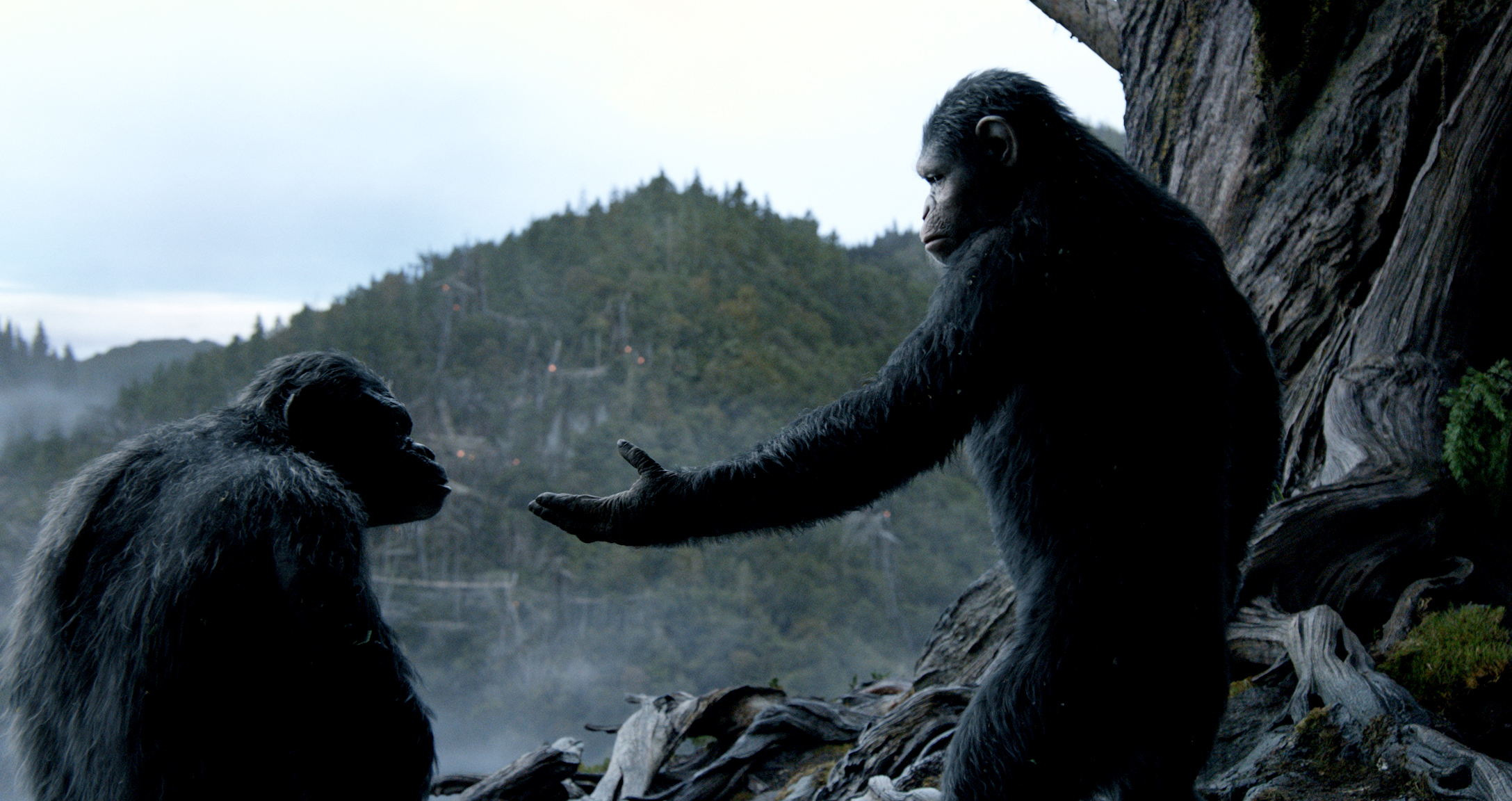 dawn-of-the-planet-of-the-apes-pics-9.jpg