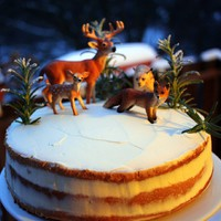 Téli erdő torta