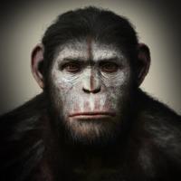 Helyes kis ruhájuk lett volna a majmoknak az új Majmok bolygója-filmben