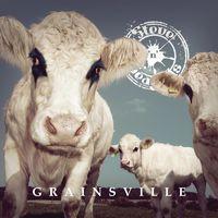 STEVE 'N' SEAGULLS - Grainsville (2018)