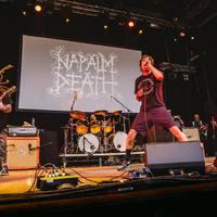 NAPALM DEATH - Friss dal a kult grind csapattól: Oh So Pseudo